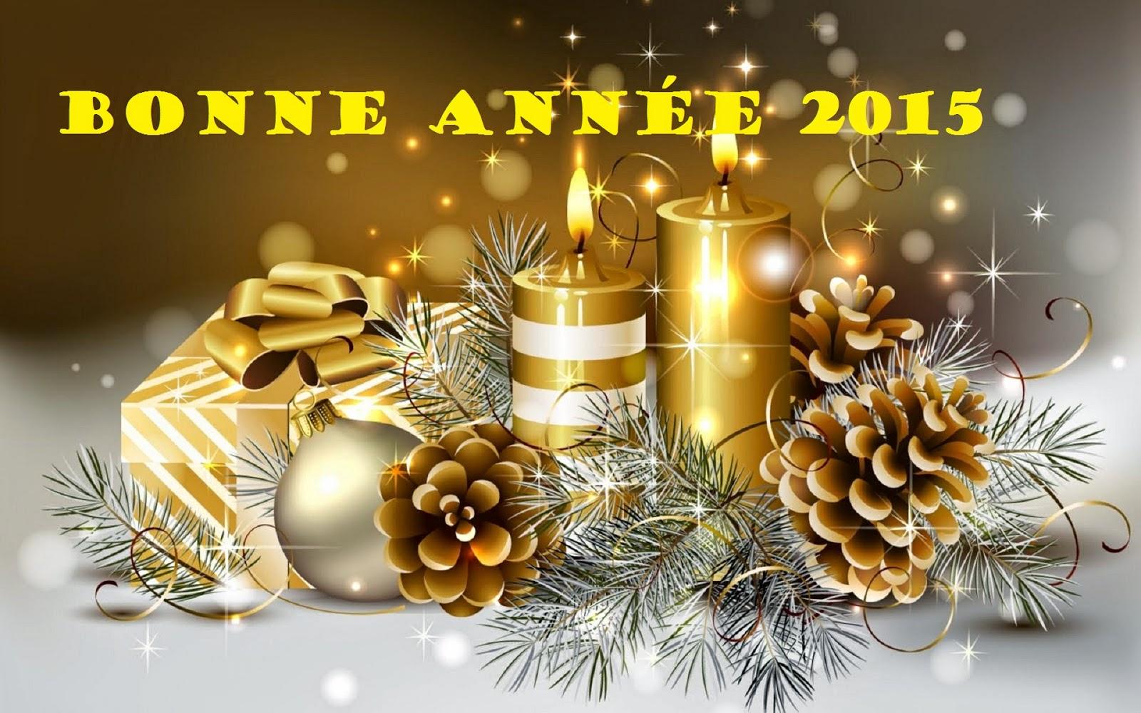 Bonne année 2015 !  7305408-11236045