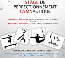 Stage Loisir de Gymnastique