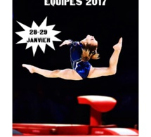 GAF: Championnat des Yvelines au Chesnay