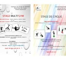 Stage Multi gym