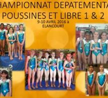 GAF: Résultats Département Poussines et Libre 1&2